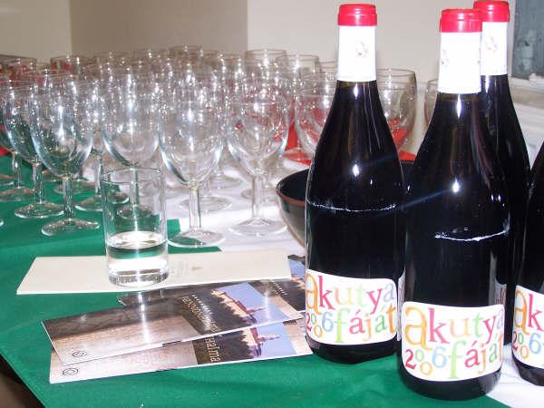 Hungarian Wine Tasting - Green Park Bath